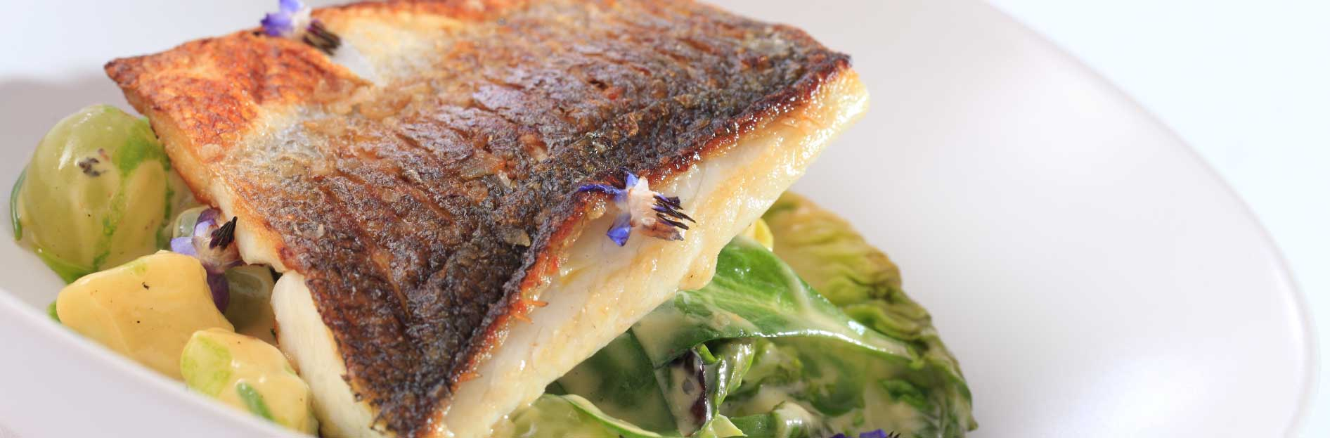 Pan fried seabass with sea vegetables, braised gem and white wine grape sauce